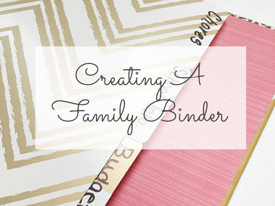 Love this! Great ideas for creating a family binder to keep all your important lists and documents in one place.