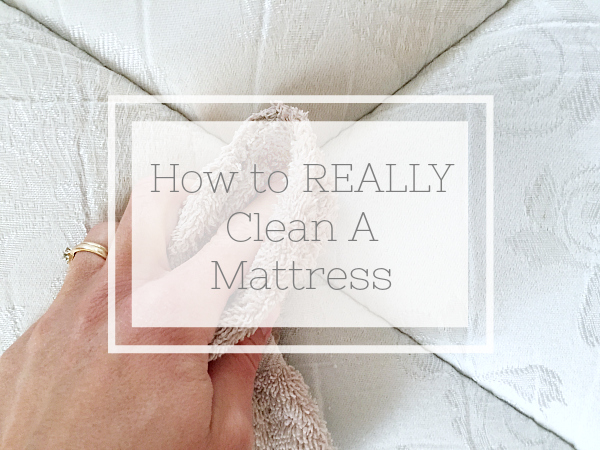 How to REALLY Clean A Mattress