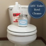 Cleaning Tip Tuesday: DIY Toilet Cleaner