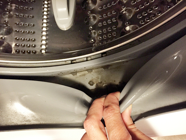 Cleaning the Rubber Seal on a Washing Machine
