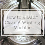 Cleaning Tip Tuesday: Cleaning the Washing Machine