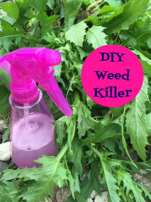I cannot believe how well this DIY Weed Killer works, and I already had all the ingredients on hand!