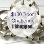 $100 Room Challenge: I Shopped…
