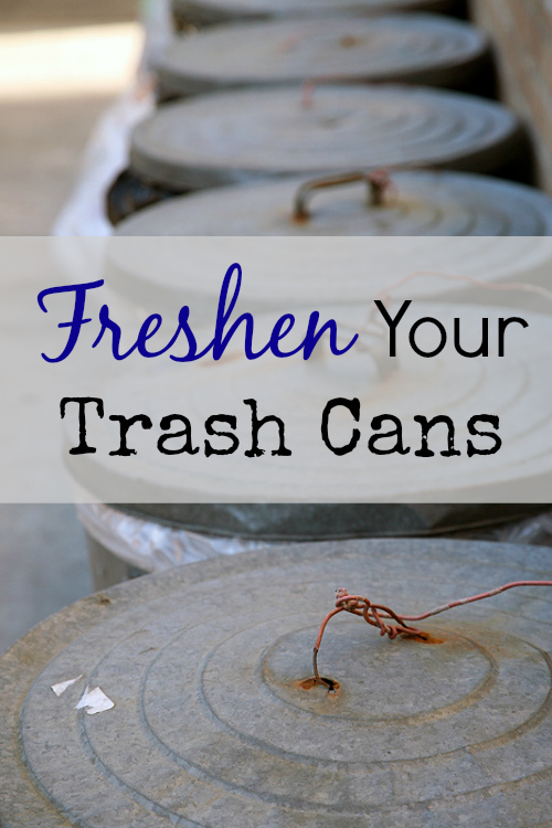Cleaning Tip Tuesday Freshen Your Trash Cans Lemons