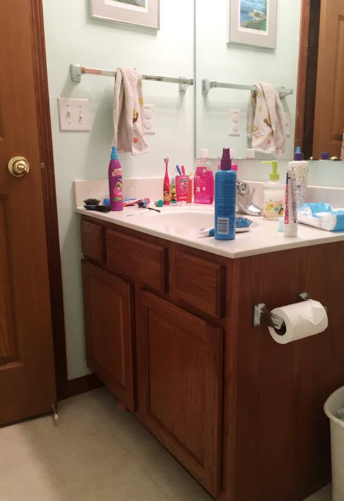 Introducing the Kids' Bathroom
