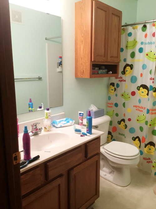 Introducing the Kids' Bathroom