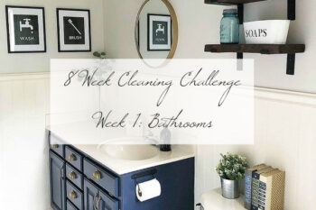 Cleaning Challenge Bathrooms Title Image