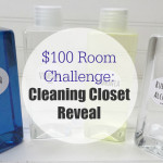 $100 Room Challenge: Cleaning Closet Reveal