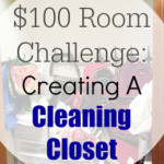 $100 Room Challenge: Creating A Cleaning Closet