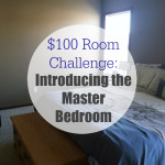 $100 Room Challenge: Introducing the Master Bedroom