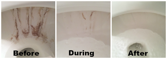 Removing Toilet Stains