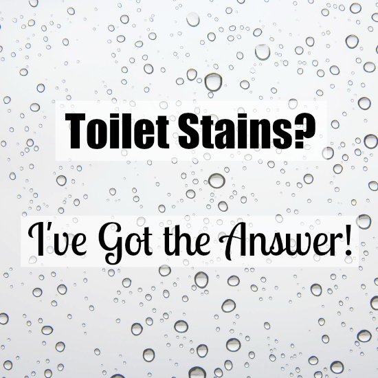 Cleaning Tip Tuesday: Removing Toilet Stains - Lemons, Lavender ...