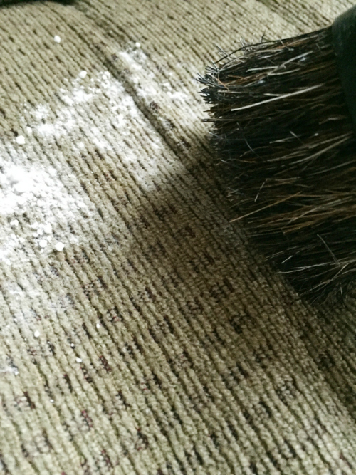 DIY Carpet and Upholstery Freshener