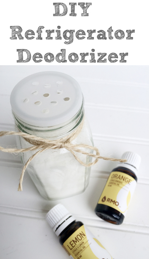 Two ingredient Refrigerator Deodorizer. So simple!