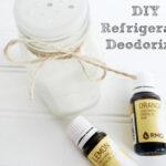 DIY Refrigerator Deodorizer