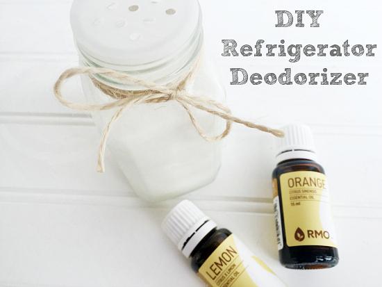 Easy DIY Refrigerator Deodorizer