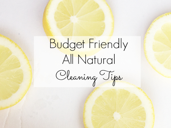 Amazing Cleaning Tips for everything from house plants to paintbrushes to carpet.