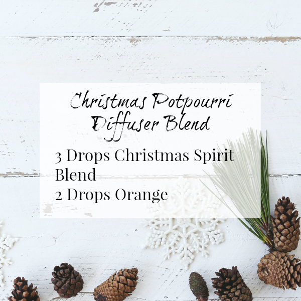 Christmas Potpourri Diffuser Blend with a combination of Christmas Spirit and Orange
