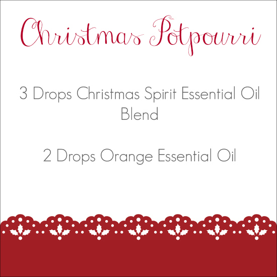 Holiday Diffuser Blends Christmas Potpourri