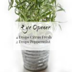 Eye Opener is a great diffuser blend to start your morning, with a combination of Citrus Fresh and Peppermint