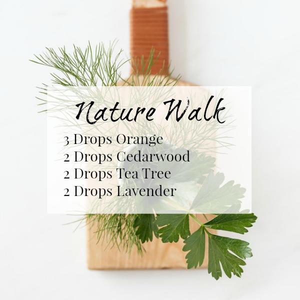 Nature Walk Diffuser Blend combines Orange, Cedarwood, Tea Tree, and Lavender