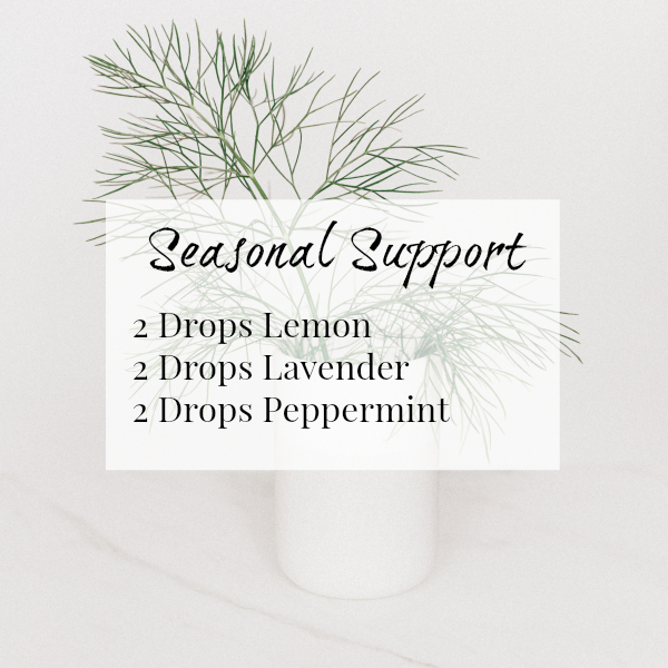 Seasonal Support Diffuser Blend combines Lemon, Lavender, and Peppermint