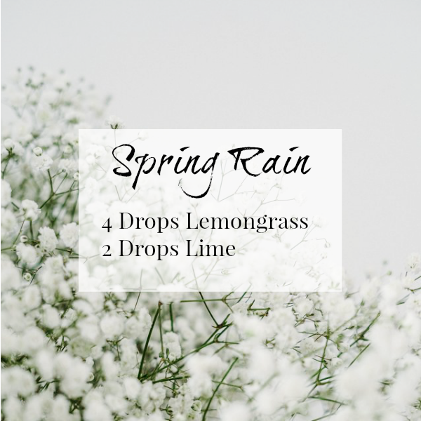 Spring Rain Diffuser Blend combines Lemongrass and Lime for a bright scent