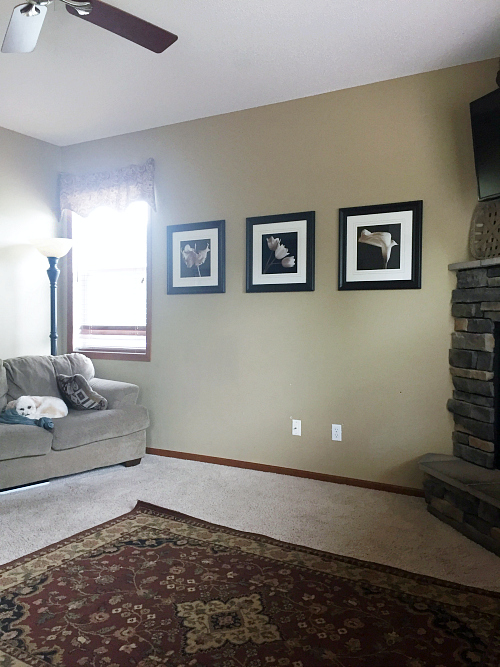 Sharing a few ideas on a budget-friendly living room makeover.