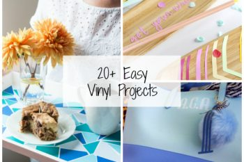 20+ Easy Vinyl Projects