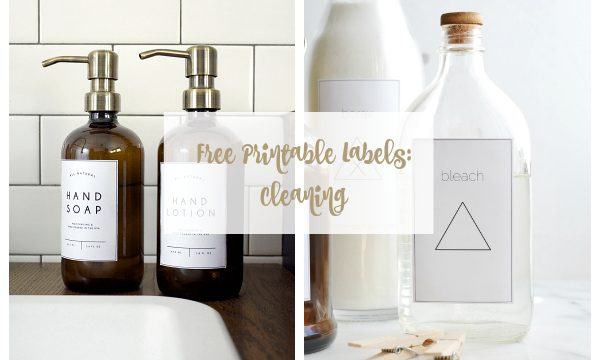 Free Cleaning Labels for Your Home