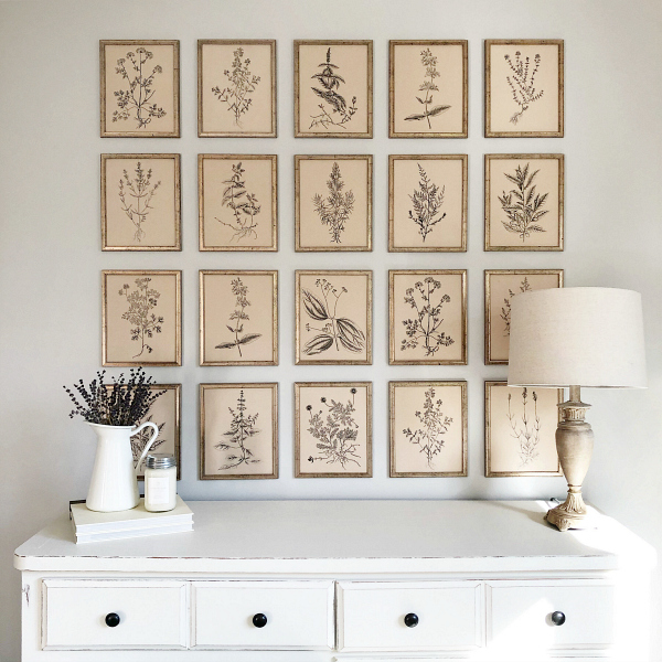 This gallery wall is absolutely gorgeous!!! I love the simple vintage vibes with the herb botanical prints, and would would have thought those frames were from the dollar store?! #botanicalprints #farmhousestyle #gallerywall #dollarstoredecor
