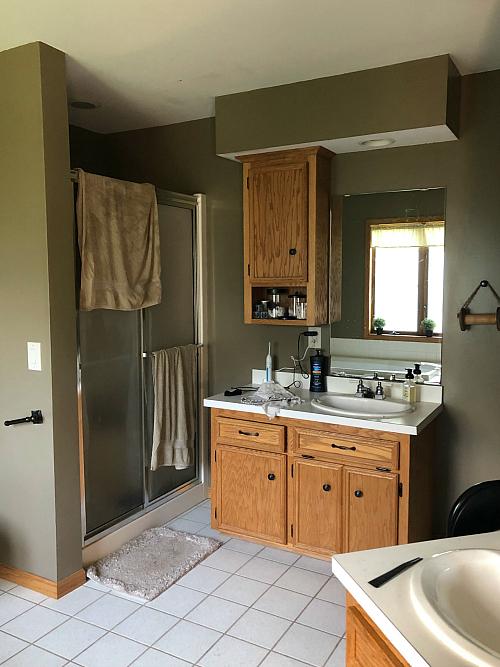 Main Bathroom Before Vanity/Shower View