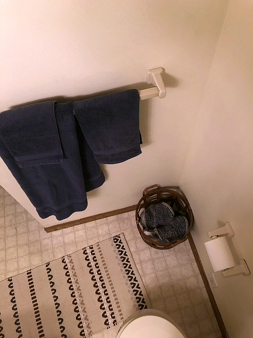 Outdated Towel Rack and Toilet Paper Holder
