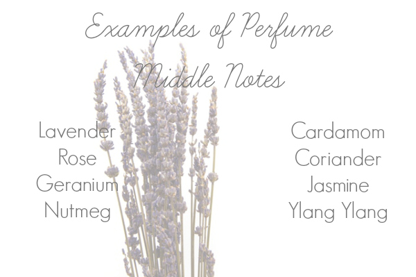 List of examples of Middle Notes when making DIY perfume