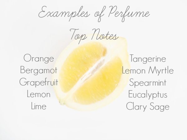 List of examples of Top Notes when making DIY perfume