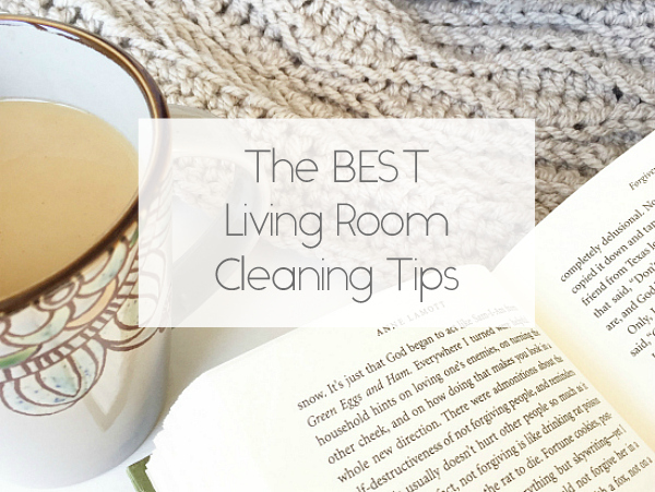 Living Room Cleaning Tips Title Image