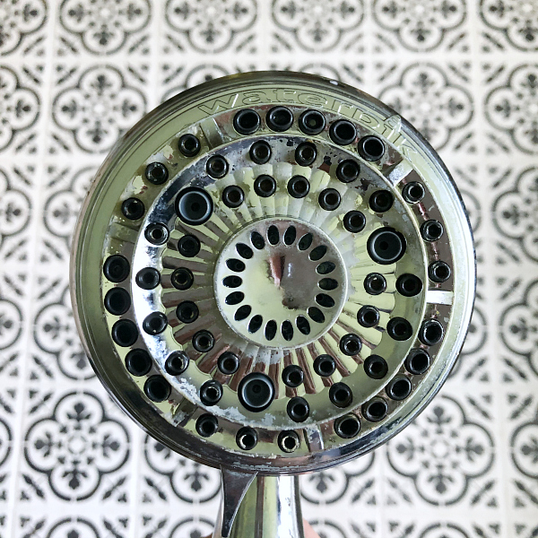 How to Clean a Shower Head After Image