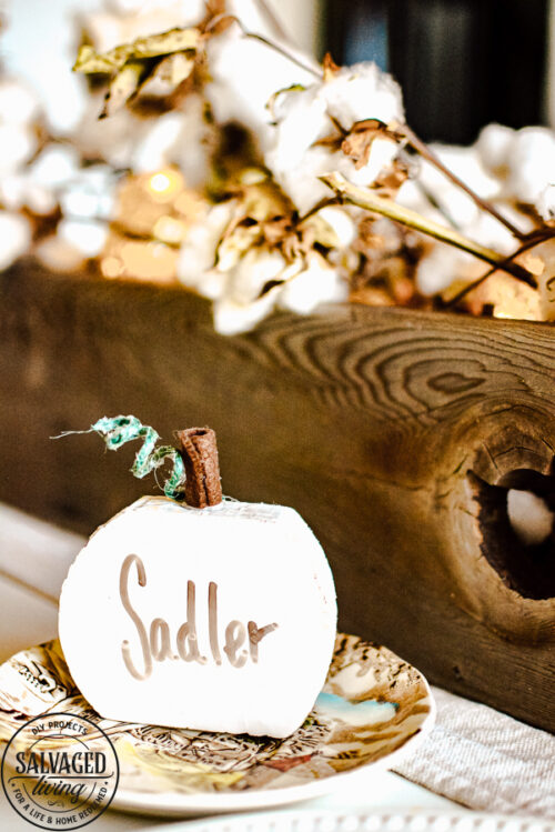DIY Dry Erase Pumpkins from Salvaged Living